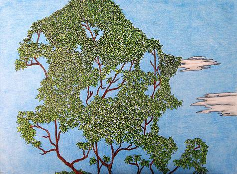 Tree Top 1 of 3 by Gregory Carrico