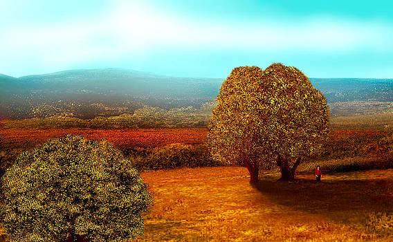 Tree Watch by John Townes