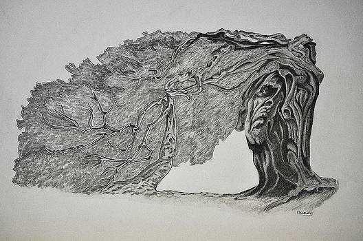 Tree with Faces by Glenn Calloway