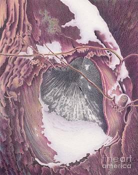 Treeheart by Elizabeth Dobbs