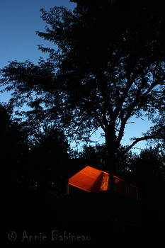 Anne Babineau - treehouse campout