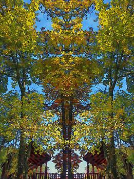 Trees Alive by Susan Leggett