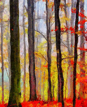 Trees and colors by George Rossidis