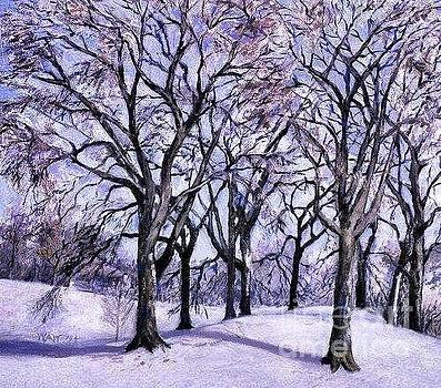 Nancy Wait - Trees in Snow