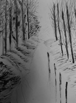 Trees by Karma Gurung