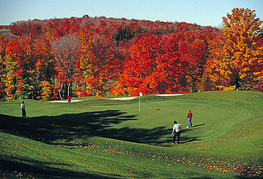 Dennis Cox - Treetops golf