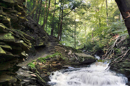 Gene Walls - Trekking Past Seneca Falls