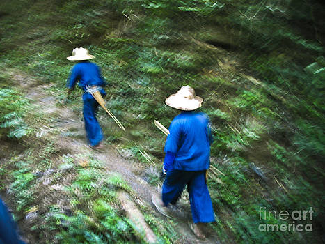 Trekking Through The Thai Jungle by Suzanne Simpson