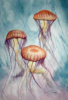Tres Jellyfish by Jeff Lucas
