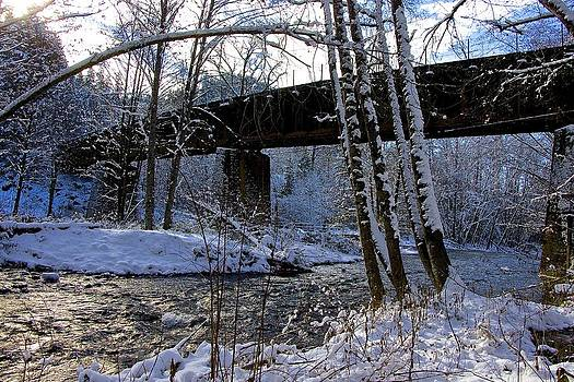 Trestle Winters View by Tim Rice