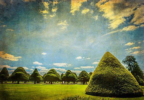 Lenny Carter - Triangular Trees 001