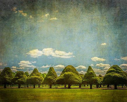 Lenny Carter - Triangular Trees 003