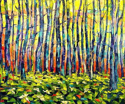 Trilliums by Keren Gorzhaltsan