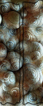 Trimmed Snails by Florin Birjoveanu