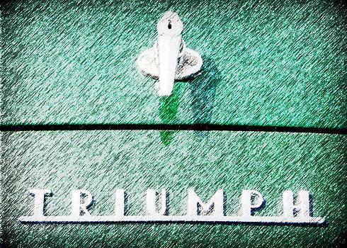 Karyn Robinson - Triumph