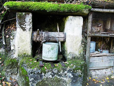 Randi Kuhne - Troglodyte Well