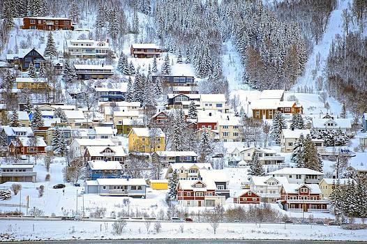 Tromso Hillside by Diana Robinson