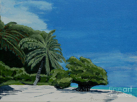 Tropical Beach by Anthony Dunphy