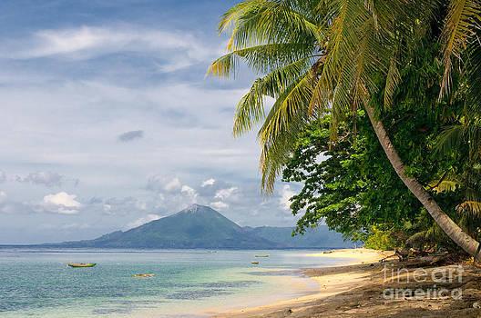 Tropical Beach  by Konstantin Kalishko