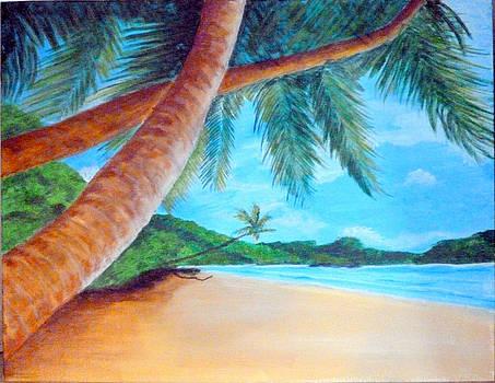 Tropical Beach by Nancy Nuce