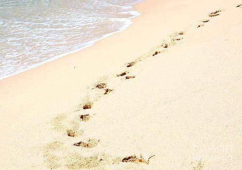 Tropical beach with footprints by Christina Rahm