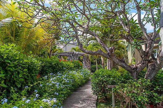 Jenny Rainbow - Tropical Garden. Mauritius