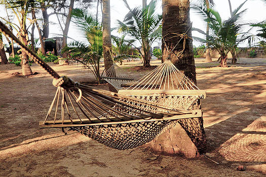 Kantilal Patel - Tropical Hammocks and Coconut trees