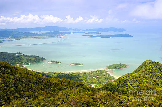 Tim Hester - Tropical Islands