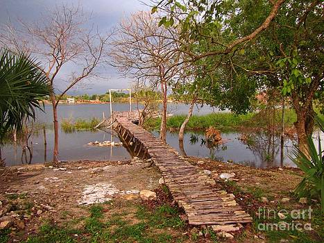 John Malone - Tropical Landscape at Lake