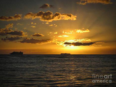 Tropical Light by John Perez