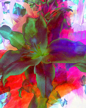 Tropical Lily by Louise Grant