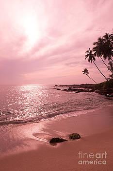 Tropical pink landscape by Christina Rahm