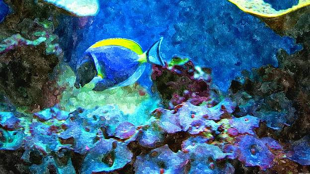 Rosemarie E Seppala - Tropical Seas Powder Blue Tang