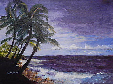 Tropical Storm by Carol L Miller