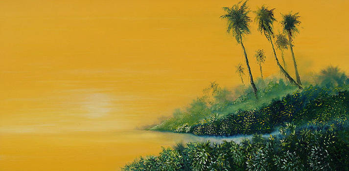 Tropical Sunrise by David Kacey