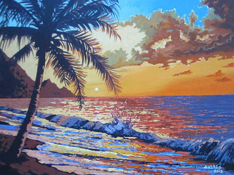 Tropical Sunrise by Andrei Attila Mezei