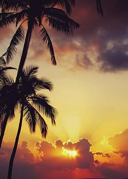 Jenny Rainbow - Tropical Sunset