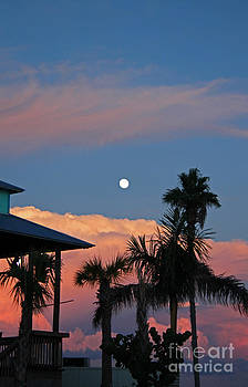 Tropical Sunset with the Moon Rise by Kathy DesJardins