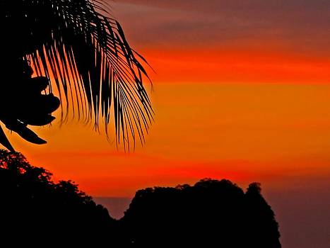 Tropical Sunset by Pete Marchetto