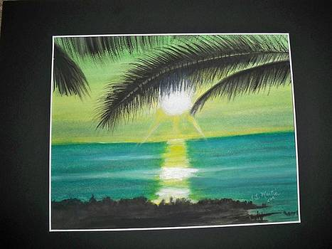 Tropical sunset by Tammy McClung