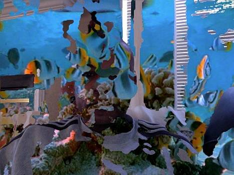 Tropicalia by Karl Greaves