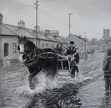 Trotting thro the floods Limerick 2014 by Tomas OMaoldomhnaigh