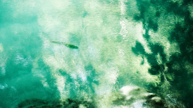 Weston Westmoreland - Trout in Turquoise