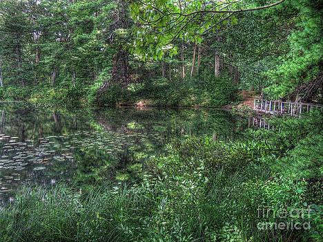 Trout Pond by Jeff Breiman