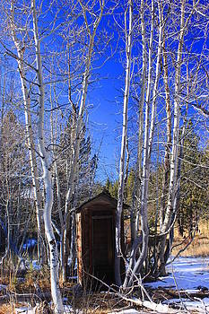 Truckee Outhouse by Mickey Hatt