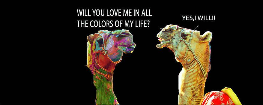 MS  Fineart Creations - True Love.