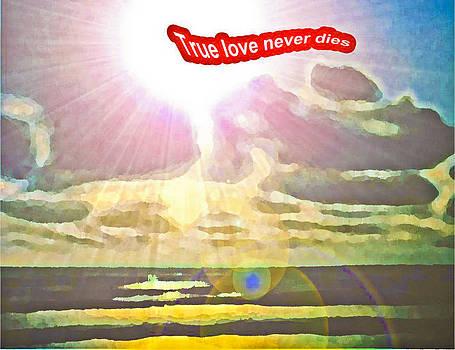 Algirdas Lukas - True love never dies