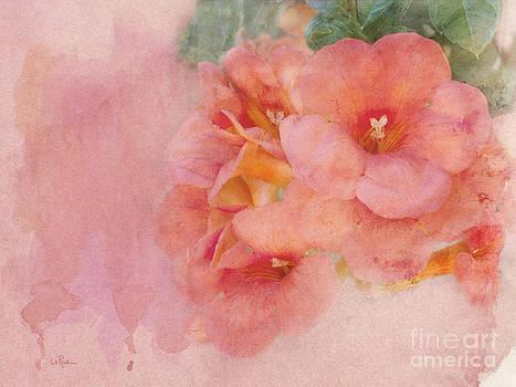 Trumpet Flowers #5 by Betty LaRue