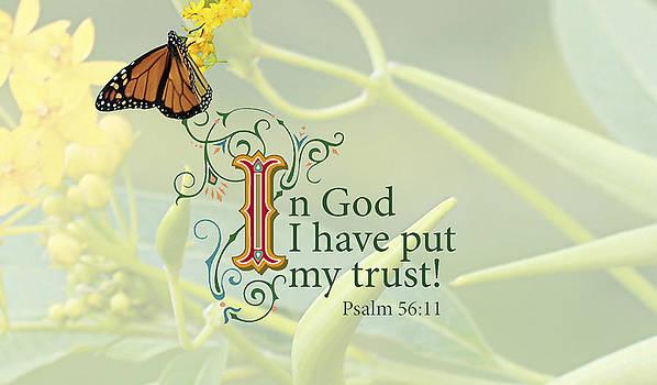 Trust by Sarah Christian