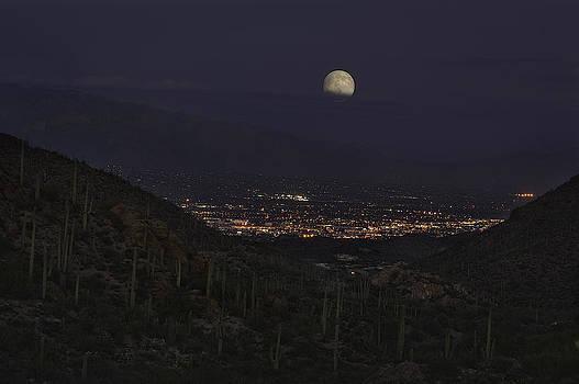 Tucson At Dusk by Lynn Geoffroy